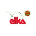 Brinquedos Elka pelos menores preços - www.bigcerebro.com.br